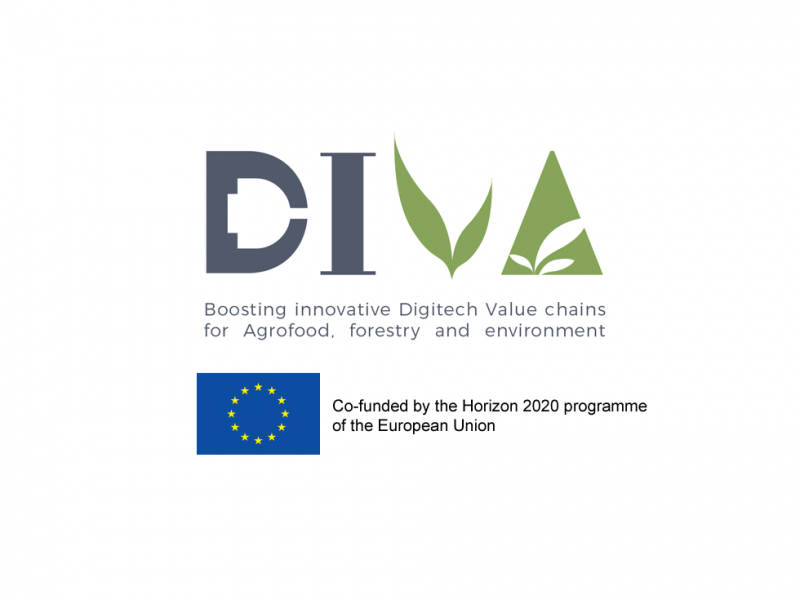 Riego Inteligente para Proyecto DIVA Intelligent Irrigation for DIVA Project. Product design, development, R+D+i, innovation, engineering, consultancy